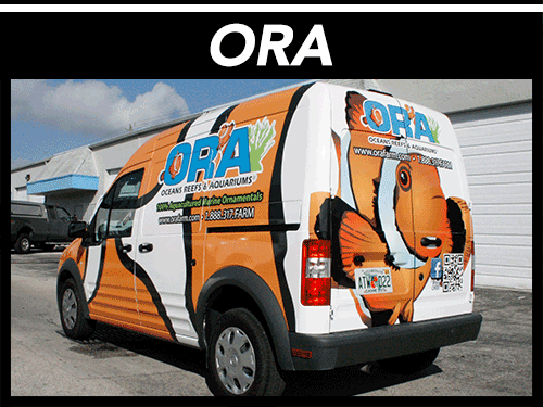 Ford Transit Connect 3M Vinyl Wrap Port St Lucie Florida