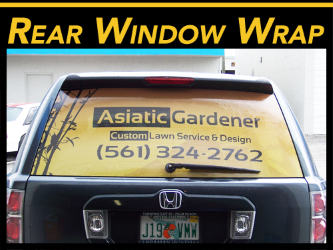 Rear window vinyl wraps & graphics